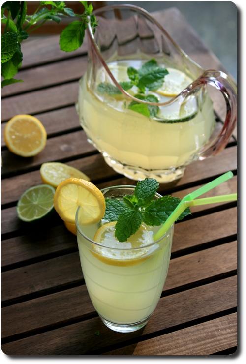 Limonade maison la menthe savoirs et saveurs for Alcool de menthe fait maison